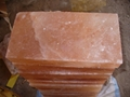 Salt Tiles 12x6x1.5 inches