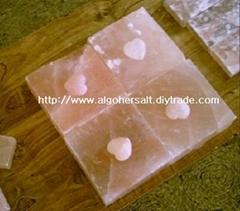 8x8x3英吋的鹽磚
