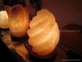 Fancy Salt lamp 08