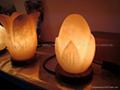 花式鹽燈9