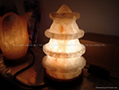 Fancy Salt Lamp 10