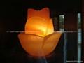 Fancy Salt Lamp 12
