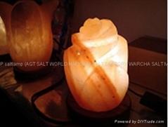 花式鹽燈13