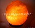 Fancy Salt Lamp 06
