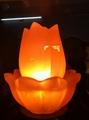 LOTUS SALT LAMP 2PCS Set