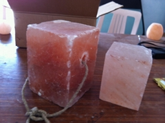 Animal Lick Salt Block