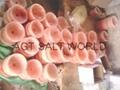 喜马拉雅盐火盆
