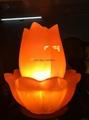 Fancy Salt Lamp 46