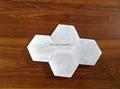 White Himalayan Rock Salt Tile Hexagon Shape