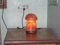 Fancy Salt Lamps 63 Lampe de sel Соляная лампа  Salzlampe