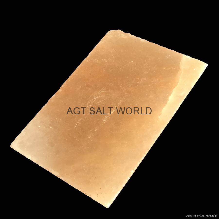 鹽磚12x6x1.5英吋 4