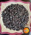 Black Edible Salt