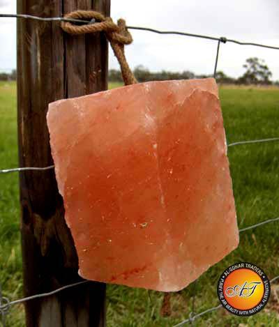 AGT Himalayan Lick Salt 7