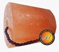 AGT Himalayan Lick Salt 8