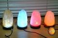 USB Fancy Salt Lamp