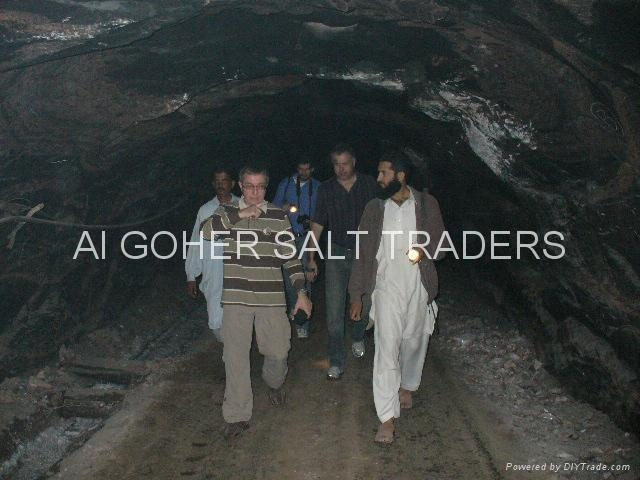 WARCHA SALT MINES