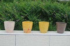 Colorful Eco-friendly Flower Pot