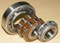 SKF Cylindrical Roller Bearing 30206