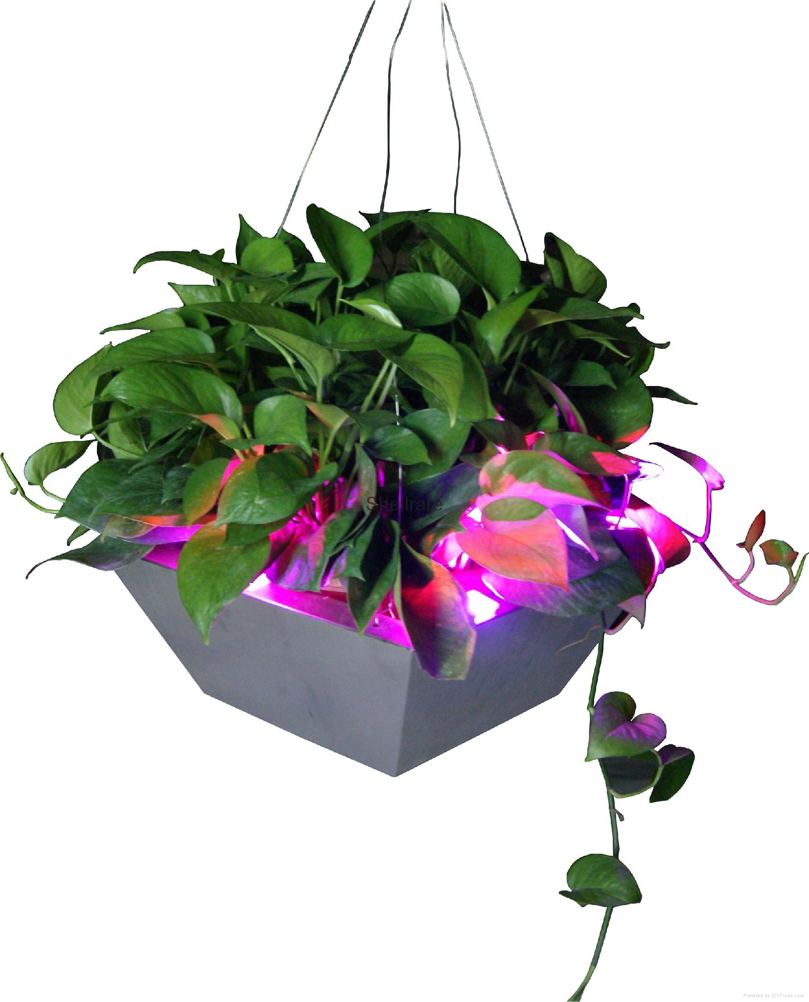 New style stainless steel hanging flower pot with led light 4