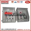 石家庄BXMD52-IIC防爆配电箱 3
