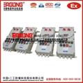 石家庄BXMD52-IIC防爆配电箱 4