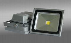 2014 High Power LED 100W led Floodlight