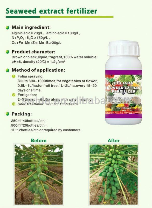 liquid seaweed extract fertilizer 2
