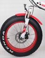 CF-TDN01Z with fat tyre snow folding e-bike (48V350W) 5