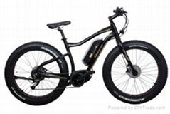 CF-TDE10Z-3 mountain electric fat bike (36V250W)