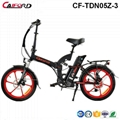 CF-TDN05Z-3 20inch Electric Folding Bike