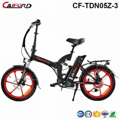 CF-TDN05Z-3 20inch Electric Folding Bike with Alum Wheel