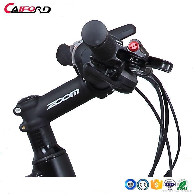 CF-TDE10Z-3 mountain electric fat bike (36V250W) 2