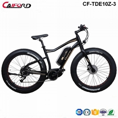 CF-TDE10Z-3 mountain electric fat bike (36V250W)