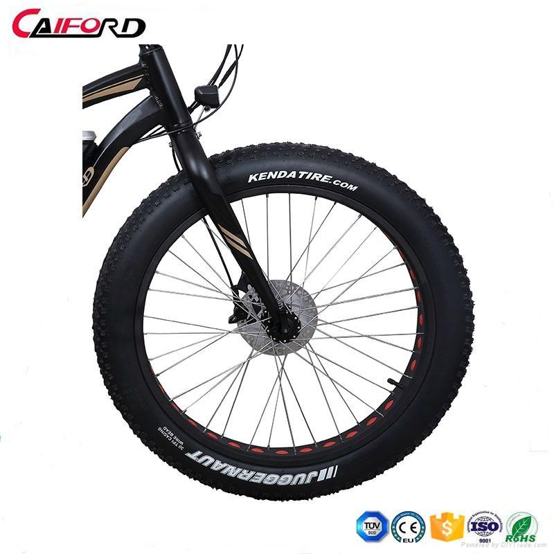 CF-TDE10Z-3 mountain electric fat bike (36V250W) 3