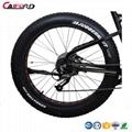 CF-TDE10Z-3 mountain electric fat bike (36V250W) 5