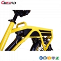 "CF-TDN03Z  20""electric cargon bicycle 4"