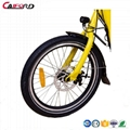 "CF-TDN03Z  20""electric cargon bicycle 3"