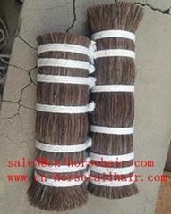 horse mane and horsetail hair