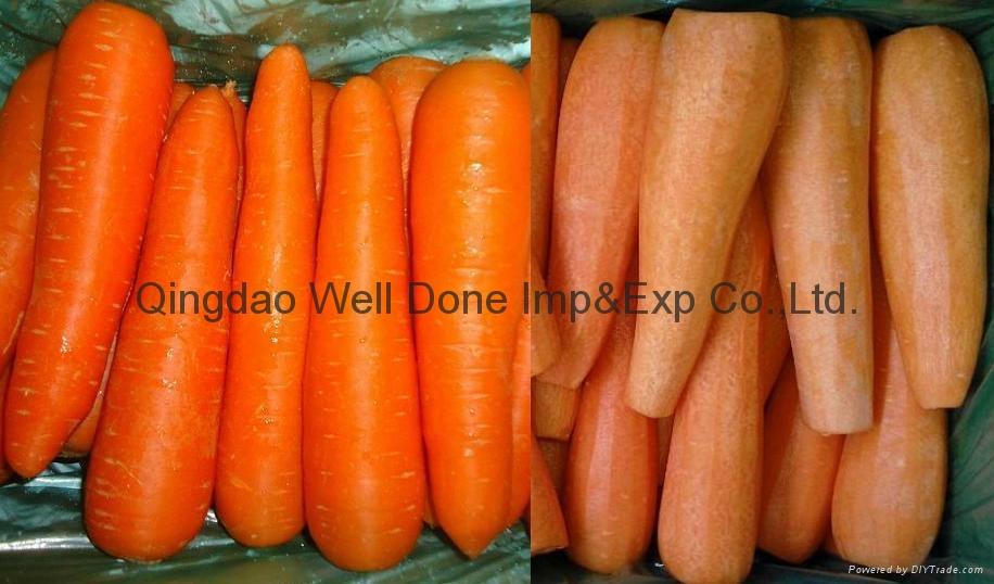 保鲜胡萝卜 1