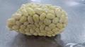 fresh potato 4