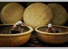 bamboo boat - bamboo coracle