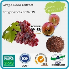 grape seed extract  natural  polyphenols powder