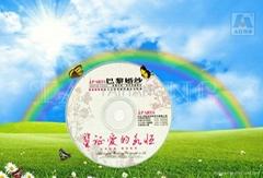 Blank DVD Printable 8X
