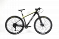 High quality carbon mountain bike TWITTER BICYCLE WARRIOR-PRO-29ER 4