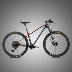 Factory wholesale High quality bicycle TWITTER carbon MTB PREDATOR-29ER-12S