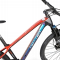 Factory wholesale High quality bicycle TWITTER carbon MTB PREDATOR-29ER-12S 5