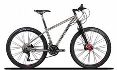 TWITTER Bike WERNER MTB,Titanium Alloy mountain bike factory wholesale