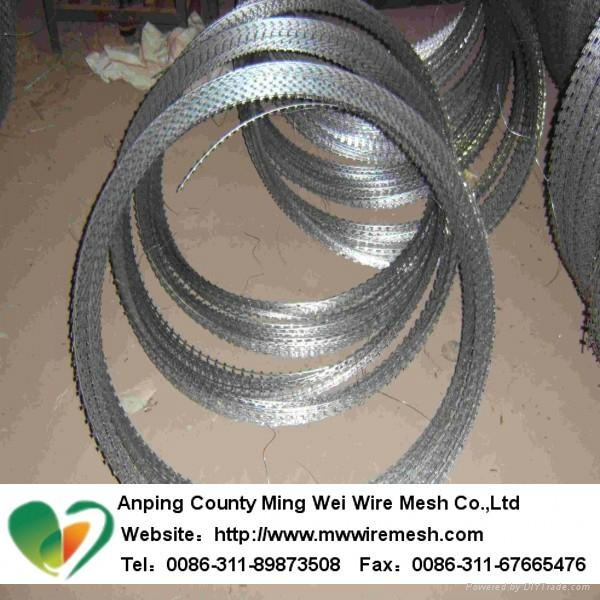 China manufacturer galvanised razor barbed wire 2