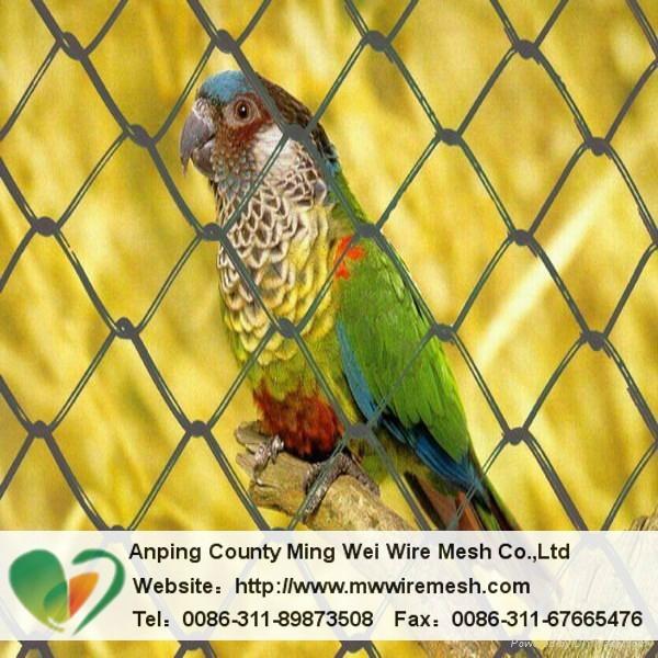 Anping factory PVC hexagonal wire mesh
