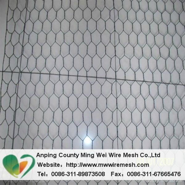Anping factory PVC hexagonal wire mesh 2